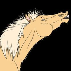 Hi have a horse
