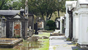 Cemetery - New Orleans 1
