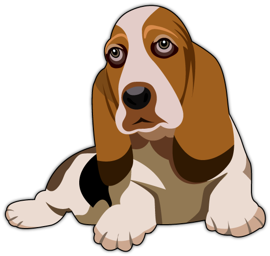 Basset Hound by tapash09 on DeviantArt