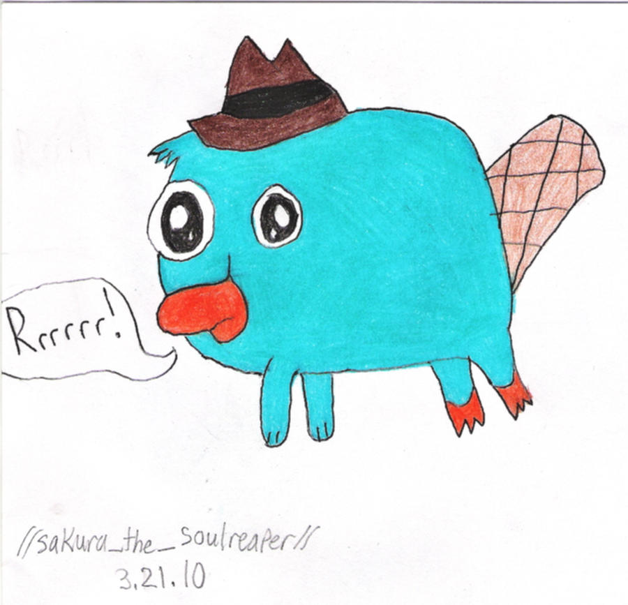 Perry the platypus as a baby baby perry the platypus by