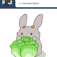 bunkat: eat lettuce by oranges-lemons