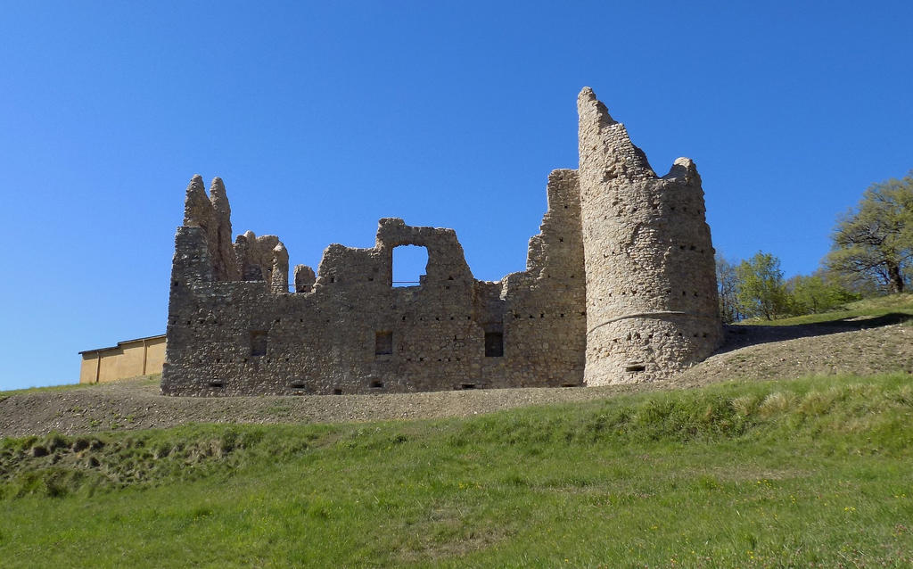 The ruins of the castle by bob60t