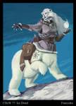ChoW 77 Ice Druid