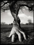 Untitled 4 - Human Nature