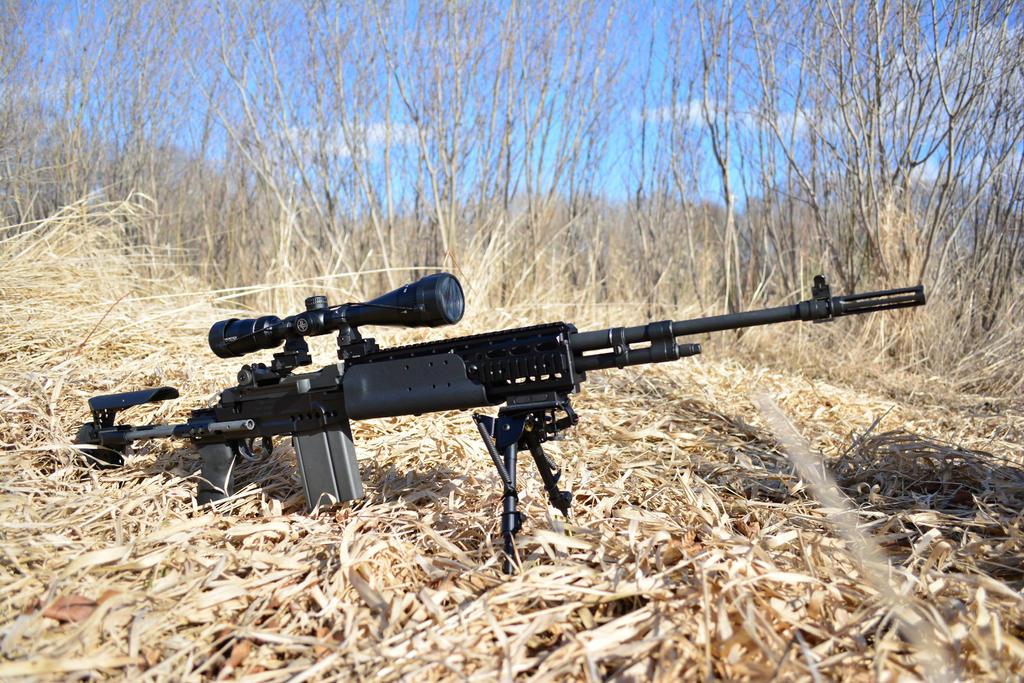 M39 Emr Vs Mk14: 1000+ Images About M1A On Pinterest – Billy