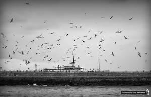 Black and White II by khrmnens