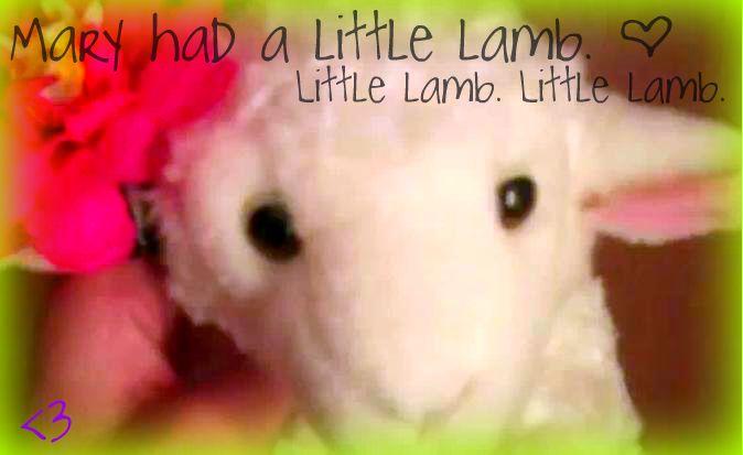 Little Lamb.