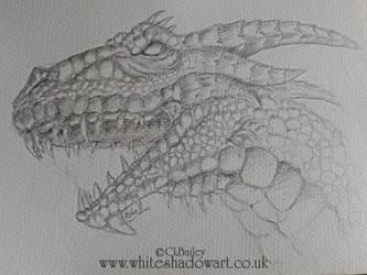 Dragon Head Sketch by Chalouba