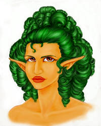 Elf Hair by NinjaMisha
