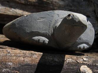 Rock turtle by kaytbear