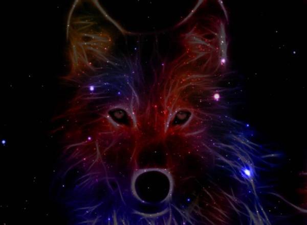 galaxy wolf wallpaper by helina01 d96awnn fullview.jpg?token=eyJ0eXAiOiJKV1QiLCJhbGciOiJIUzI1NiJ9.eyJzdWIiOiJ1cm46YXBwOiIsImlzcyI6InVybjphcHA6Iiwib2JqIjpbW3siaGVpZ2h0IjoiPD00NDEiLCJwYXRoIjoiXC9mXC82NWE1NzMzNC01NGRlLTQ2MWQtOGNlOC1lN2I4ZWJmOWQ2ZWVcL2Q5NmF3bm4tNWRlYmE5MTItOGU2YS00NDRkLTk1YzgtY2Y2YmFmZDZiYTNhLmpwZyIsIndpZHRoIjoiPD02MDAifV1dLCJhdWQiOlsidXJuOnNlcnZpY2U6aW1hZ2Uub3BlcmF0aW9ucyJdfQ