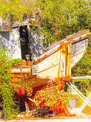 Old man's ship by petq-blagoeva