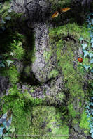 The Green Man: Walt Whitman by synchronicity313