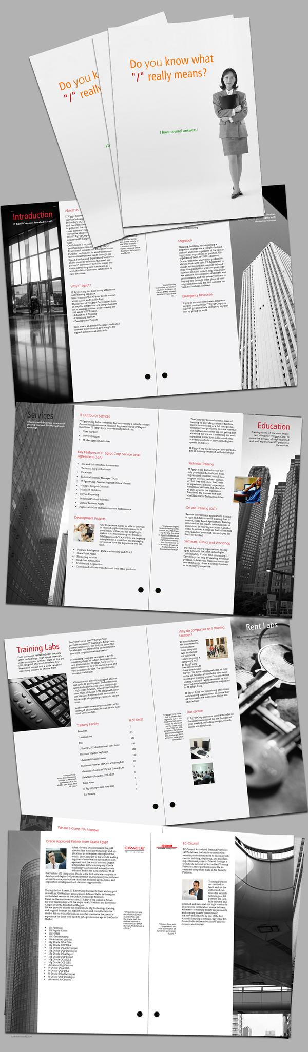 It Brochure by shawkash