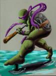 Balanced Turtle