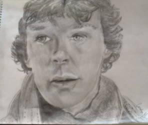 Sherlock - A Study In Pink by caroyln