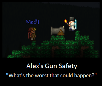 Terraria dryad quotes - Weapon Safety Terraria Players By Littlewriterlink On