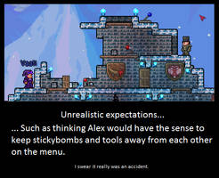 WHY U NO LEARN?! Terraria Players. by LittlewriterLink
