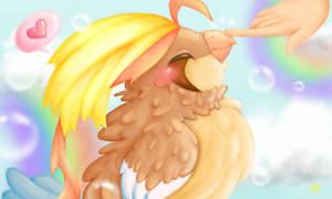 Pokemon Amie