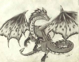 Dragon by dshwshr55
