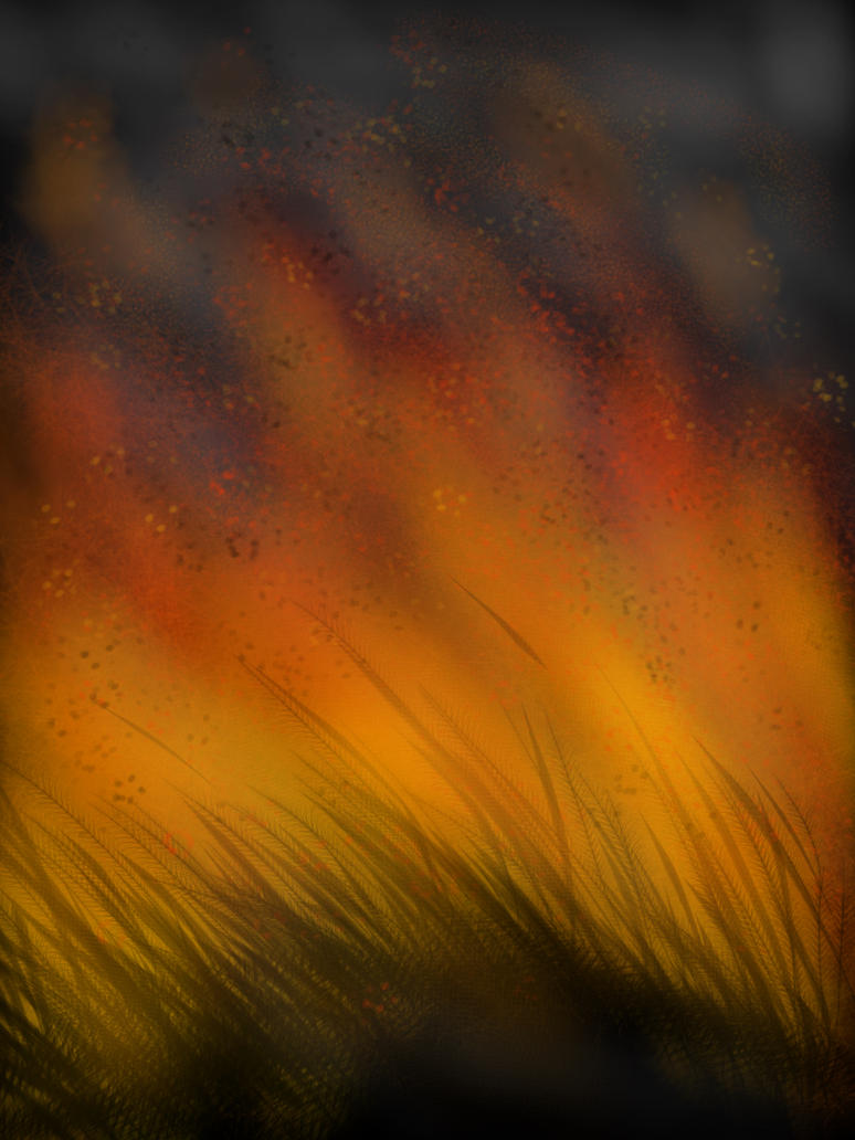 Challenge - fire by Tallomon
