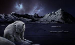 arctic love by AnevayWakanae