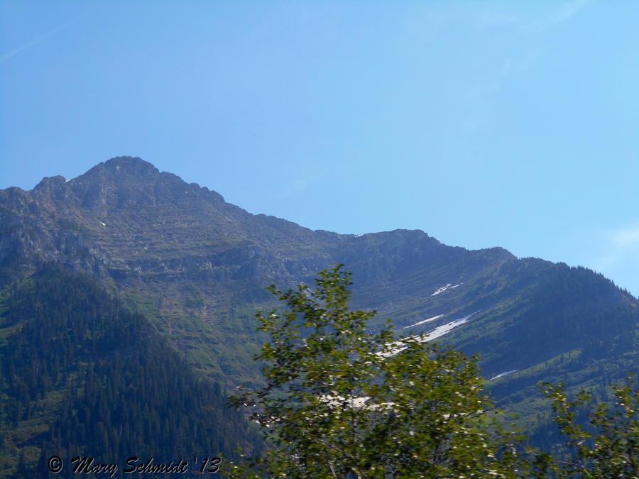 Glacier Waterton Tour