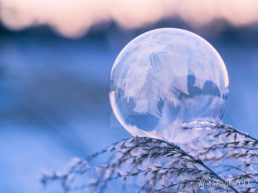 IceFeathers-ab-223239 by MSchmidtProductions