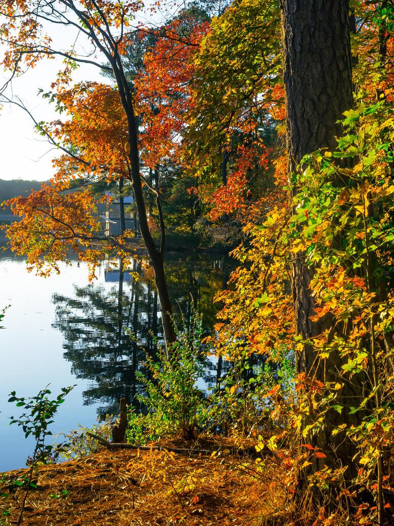 Fall at Lake Johnson #3 by FrenchieSmalls