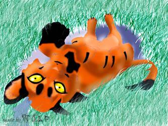 Lion cub AUCTION by snowtheacat