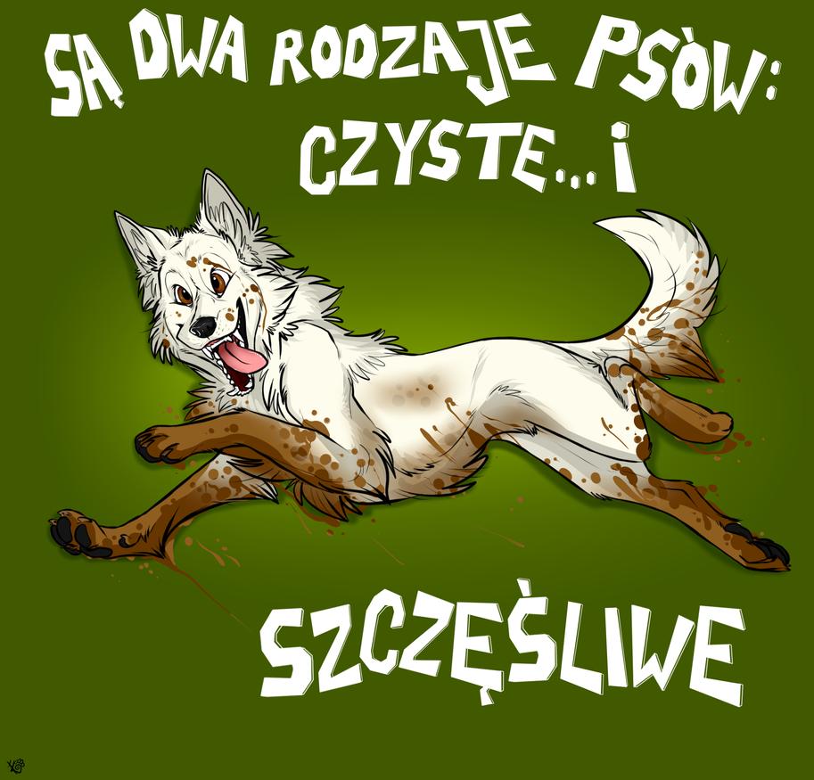 sa dwa rodzaja psow by Mazakdupa