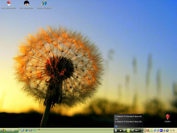 Lott's Dandelionsun Desktop by lottlott