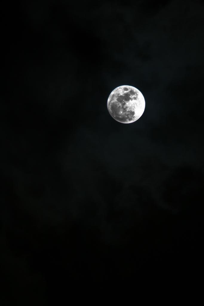 Full Moon by drinkgreenwater on DeviantArt