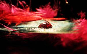 Water drop Wallpaper by KatherineDavis