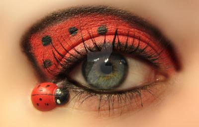 Ladybug eye x2