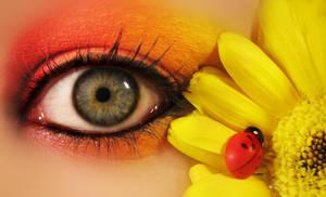 Ladybug 3 by KatherineDavis