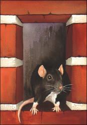 Rat In A Hole by JNFerrigno