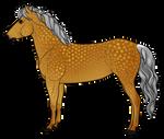 Icelandic Horse Auction 8