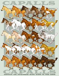 Capalls Chestnut Pony Pack