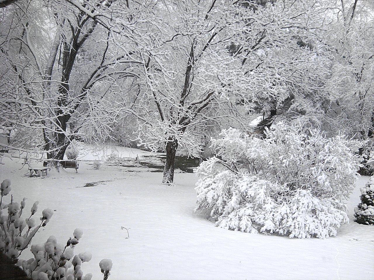 My Personal Winter Wonderland by VioletLiliez