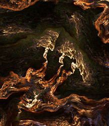Wood and moss by moravid