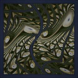Moonflowers by moravid