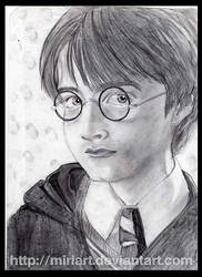 Harry by MiriArt