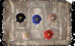 TERA - Flowers