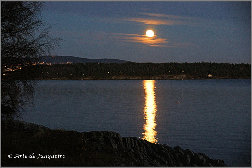 Full Moon on Oslo Fjord by Arte-de-Junqueiro
