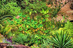 A profusion of Green