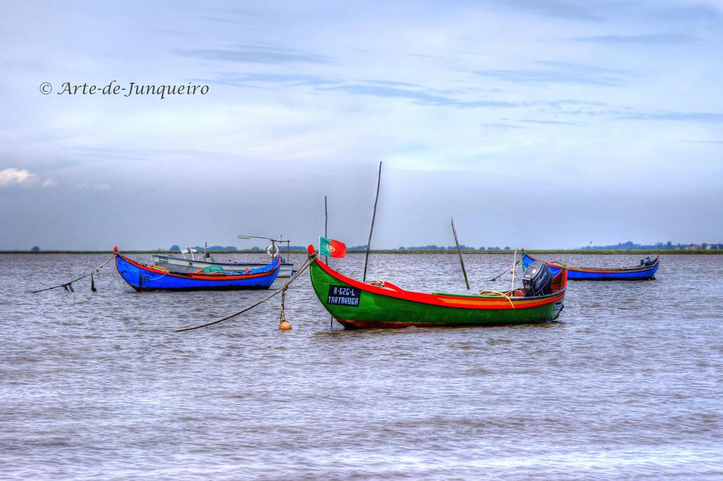 Traditional Fishing Boats by Arte-de-Junqueiro