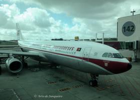 New Plane - Old Colours by Arte-de-Junqueiro