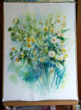 2020-05-14 Field flowers