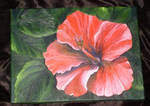 Red Hibiscus - acryl